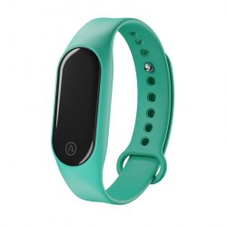 LAMAX BFit2 Mint band